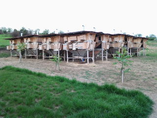 Se vinde ferma de iepuri. 15 km de la chisinau, s.hrusova, r.criuleni.teren in proprietate 3.5 ha.