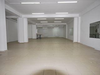 Сдаем помещение под бизнес,пройзводство 254м2 на Садовеану с рампой!