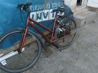 Bicicleta diamant