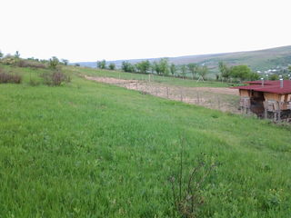 Se vinde teren agricol de 2 ha, s. Hrusova, r-ul Criuleni, 15 km de la Chisinau
