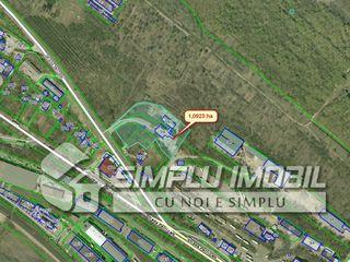 Se vinde teren pentru construcție 1.1 ha sec.Petricani , str.Petricani