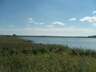 Gospodarie piscicola 250 ha (рыбхоз )