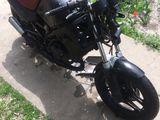 Honda urgent urgent!!!!