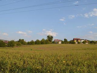 Suprafață generoasă, teren în vânzare, Dumbrava, perfect pentru afaceri!