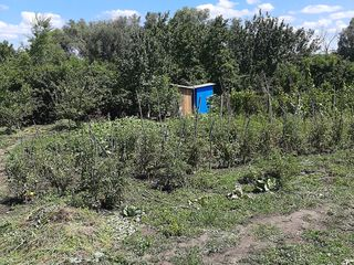 Дачный участок 6 соток 9 км от Кишинева