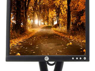 "Monitor ""Refurbished"" Dell E193FP din Germania cu garanție la cel mai bun preț din Moldova!"