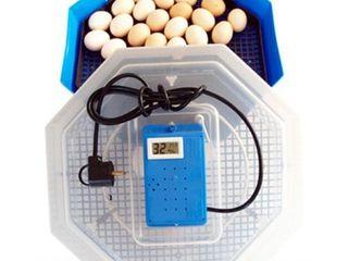 Инкубатор 60 яиц Cleo 5TH / Бесплатная доставка / Гарантия