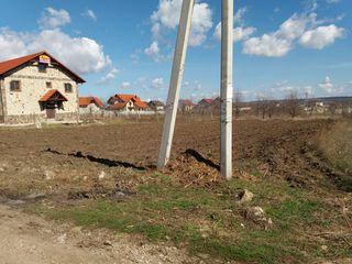 Trușeni, 12 ari, vînd teren pentru construcții sau schimb pe apartament în sectorul Buiucani, negoci