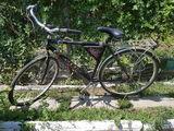 Bicicleta MBM sport cu 8 viteze pentru un domn inalt