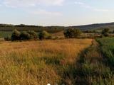 Vind teren agricol 50 ha