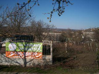 Teren - 6 sote -12800 euro, Dumbrava