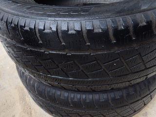 Pirelli R15 205/65