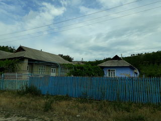 Vind casa si gradina mare cu vita de vie productiva. Este fintina, bucatarie vara- iarna si beci inc