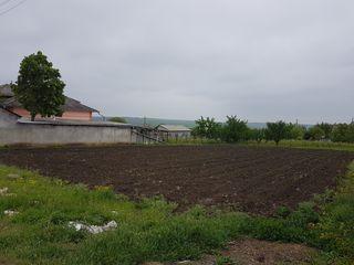 Срочно продаётся земельный участок под строительство в село корлэтень срочно
