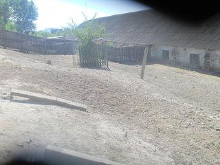 продам часть фермы и земельный участок.по соседству ЗооКлуб.(страусинная ферма).