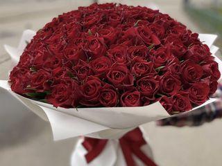 Trandafiri de calitate!!!Cele mai bune prețuri cu livrare gratuită la domiciliu decurs de o ora!!