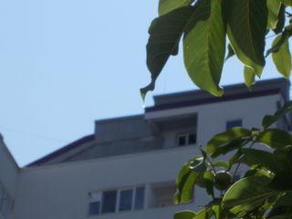 Меняю 1 комнатную квартиру на Чеканах на 1 комнатную на Ботанике