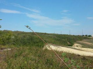 Teren agricol situat în extravilanul or. Durleşti, mun. Chişinău