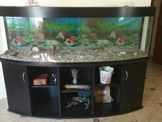 Премиум аквариум 450 литров