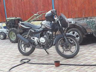 Viper 150 R6