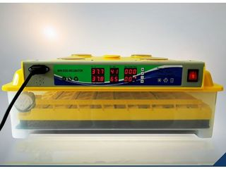 Инкубатор MS-98 с автоматическим переворотом яиц/с доставкой на дом бесплатно по всей молдове/ 2400