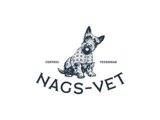 Nags-Vet Ветеринарная Клиника str. Florilor 8/1 (Рышкановка)