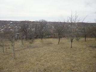 Vila, 4 km de la Alba Iulia.