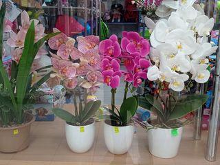 Искусственные цветы орхидея для домашнего декора./Flori artificiali