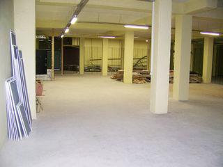 Depozit. 250 m2 + oficiu 20 m2