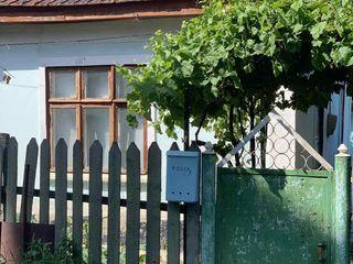 Casa pe pamint Chișinău