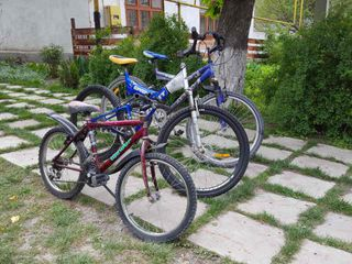 Biciclete de la germania