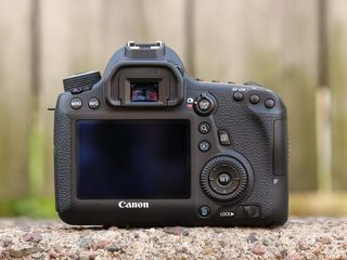Canon 6D ideal