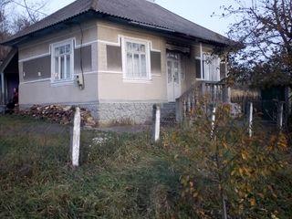 Casa Briceni Medveja Дом 2500 euro