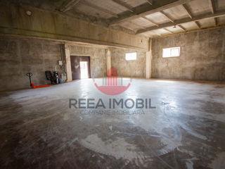 Spre chirie depozit in Dumbrava ( sos. Balcani ) 150m.p + 20m.p ( oficiu )