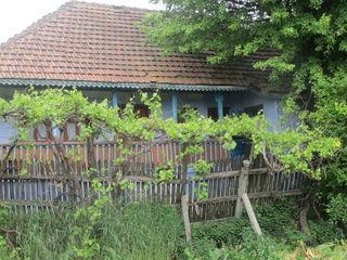 Se vinde casa in centrul satului Peresecina!!!