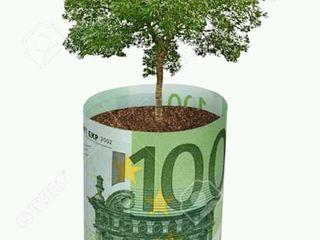 Asistență financiară gratuita pentru toți whatsapp: +373 68857366