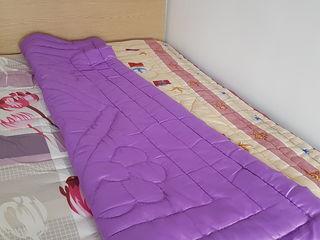 Plapuma (одеяло)/ ogheal lana naturala de oaie