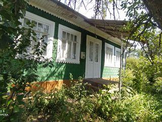 Vînd gospodărie în satul Pivniceni