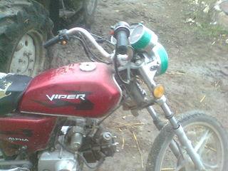 Viper alpaha