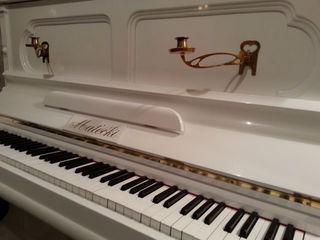 Настройщик Академии Музыки.Вся сфера услуг: ремонт, реставрация,перевозка пианино и роялей.