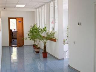 Chirie oficii, croitorii s.a. 415 m2;