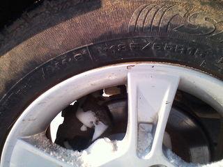 Резина R15.( шины )