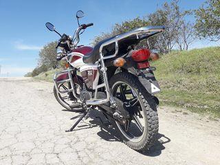 Viper RX 110cm3