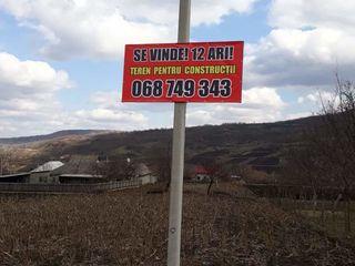 Vind teren pentru constructii. S. Lozova