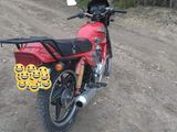 Viper V 150 J