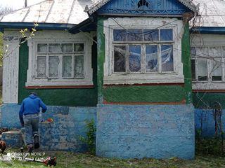 Vind casa curesnita veche