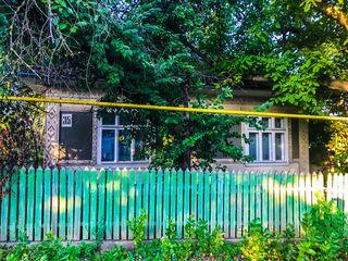 Продается дом в Единцах