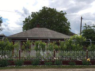 Дом в г.Дондушень