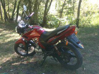Viper Max 200 cc