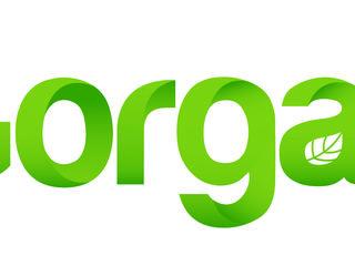 Компания SRL Gorgan  предоставляет семенной материал